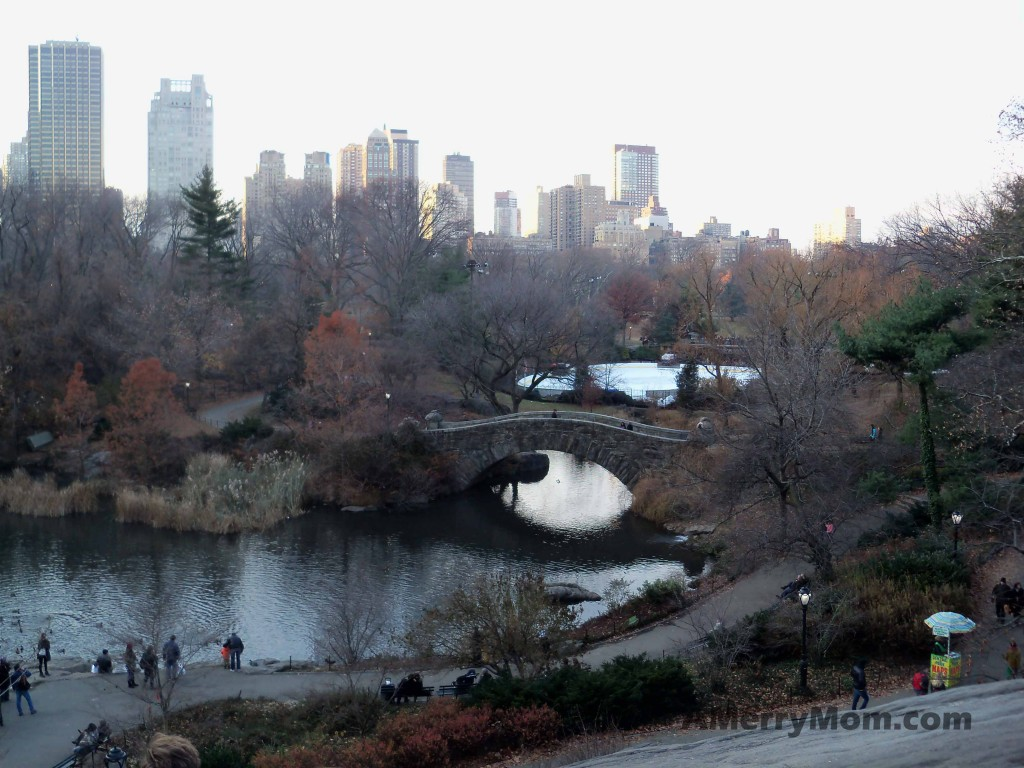 Central Park, New York City - December 1, 1013