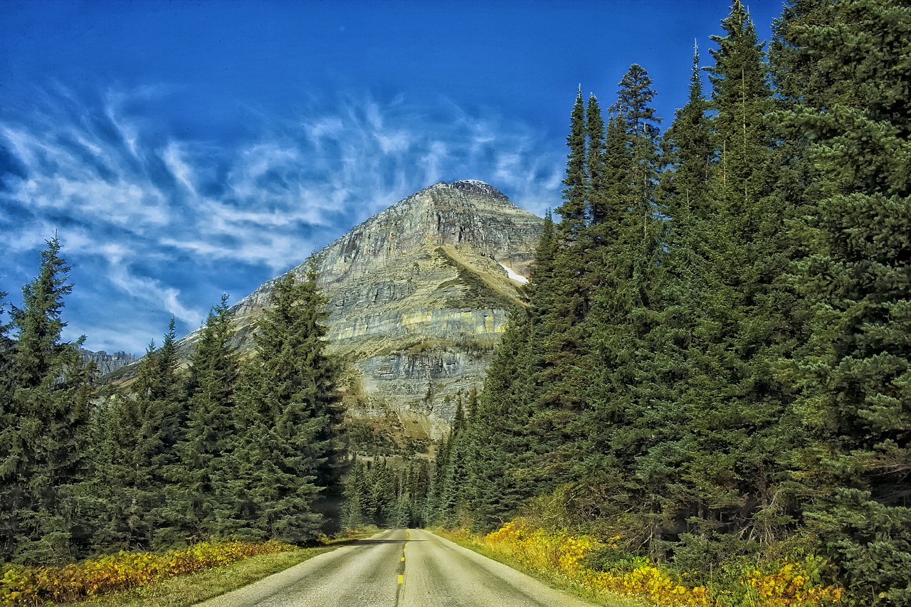 Free admission to national parks in the United States - amerrymom.com