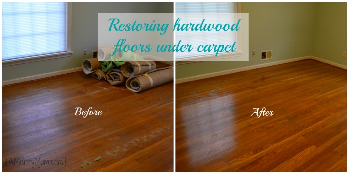 Restoring hardwood floors under carpet without refinishing the hardwood before after solutioingenieria Choice Image